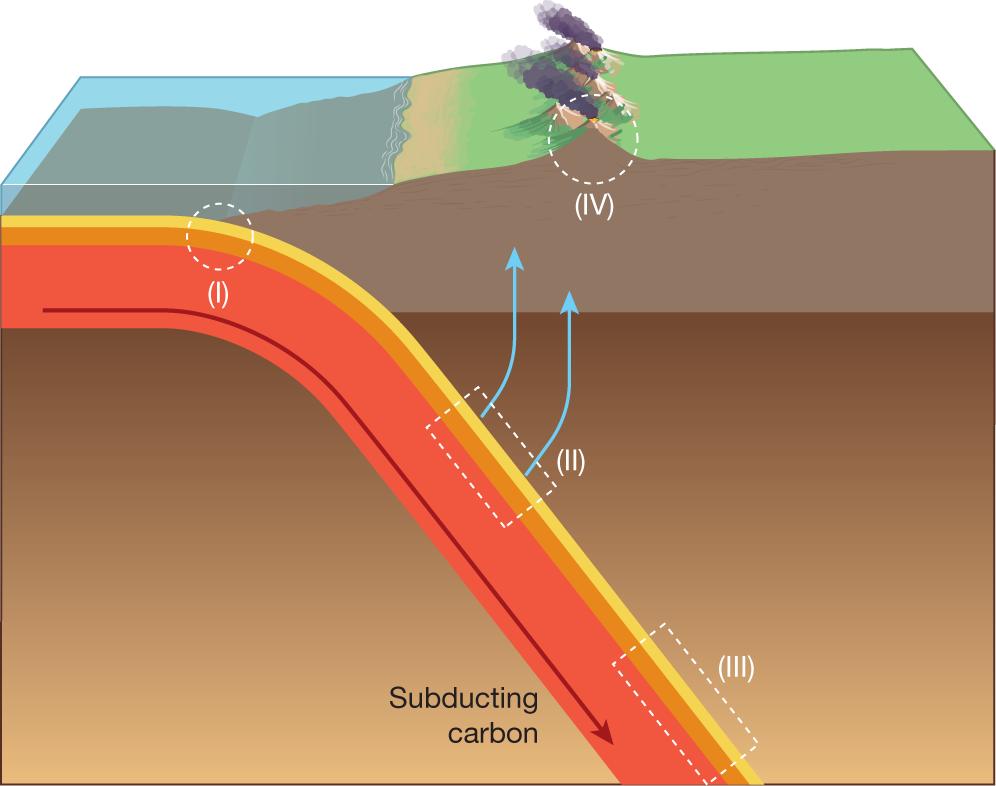Subducting carbon