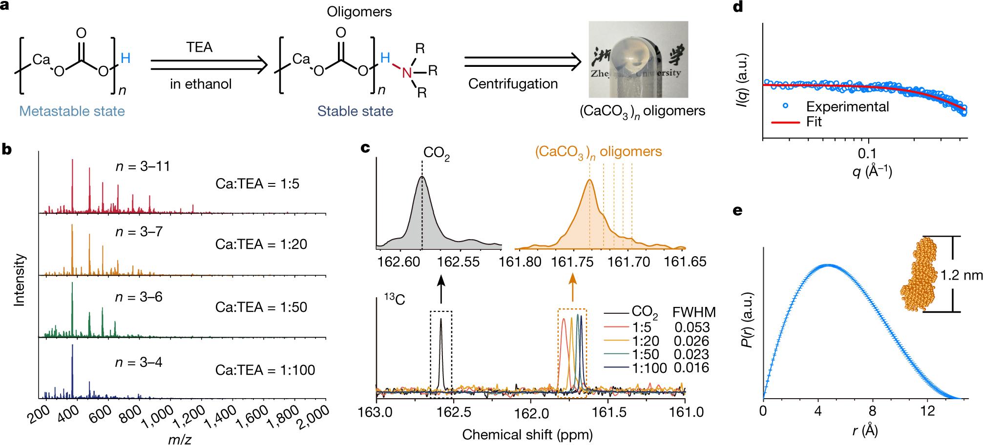 Crosslinking ionic oligomers as conformable precursors to calcium carb