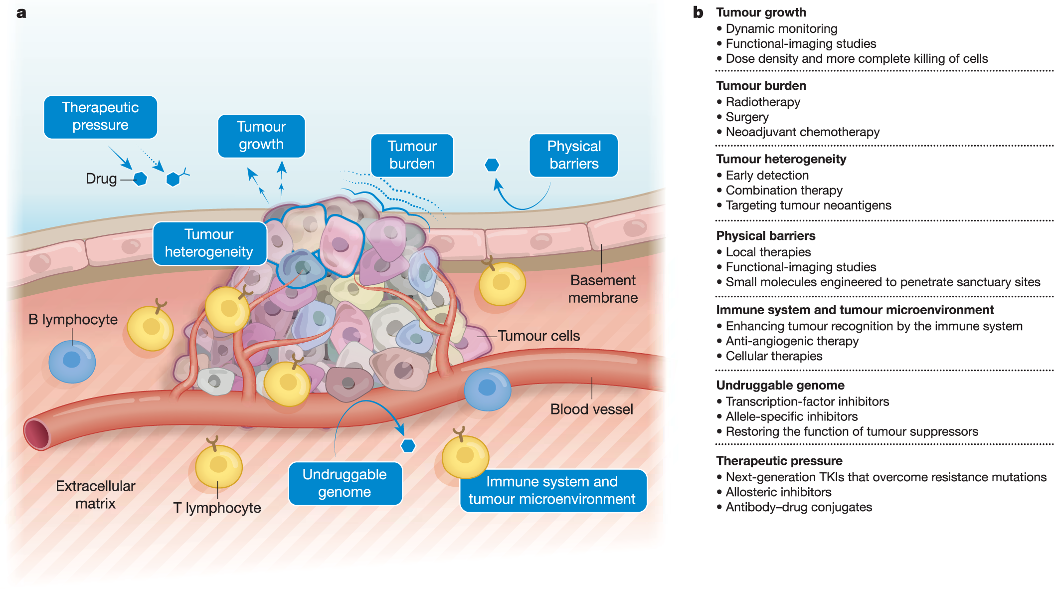 A view on drug resistance in cancer