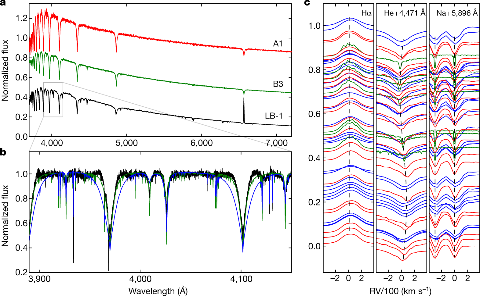 A Wide Starblack Hole Binary System From Radial Velocity