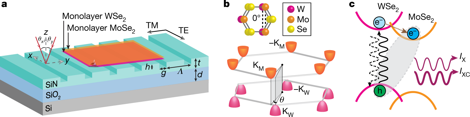 Interlayer exciton laser of extended spatial coherence in atomically t