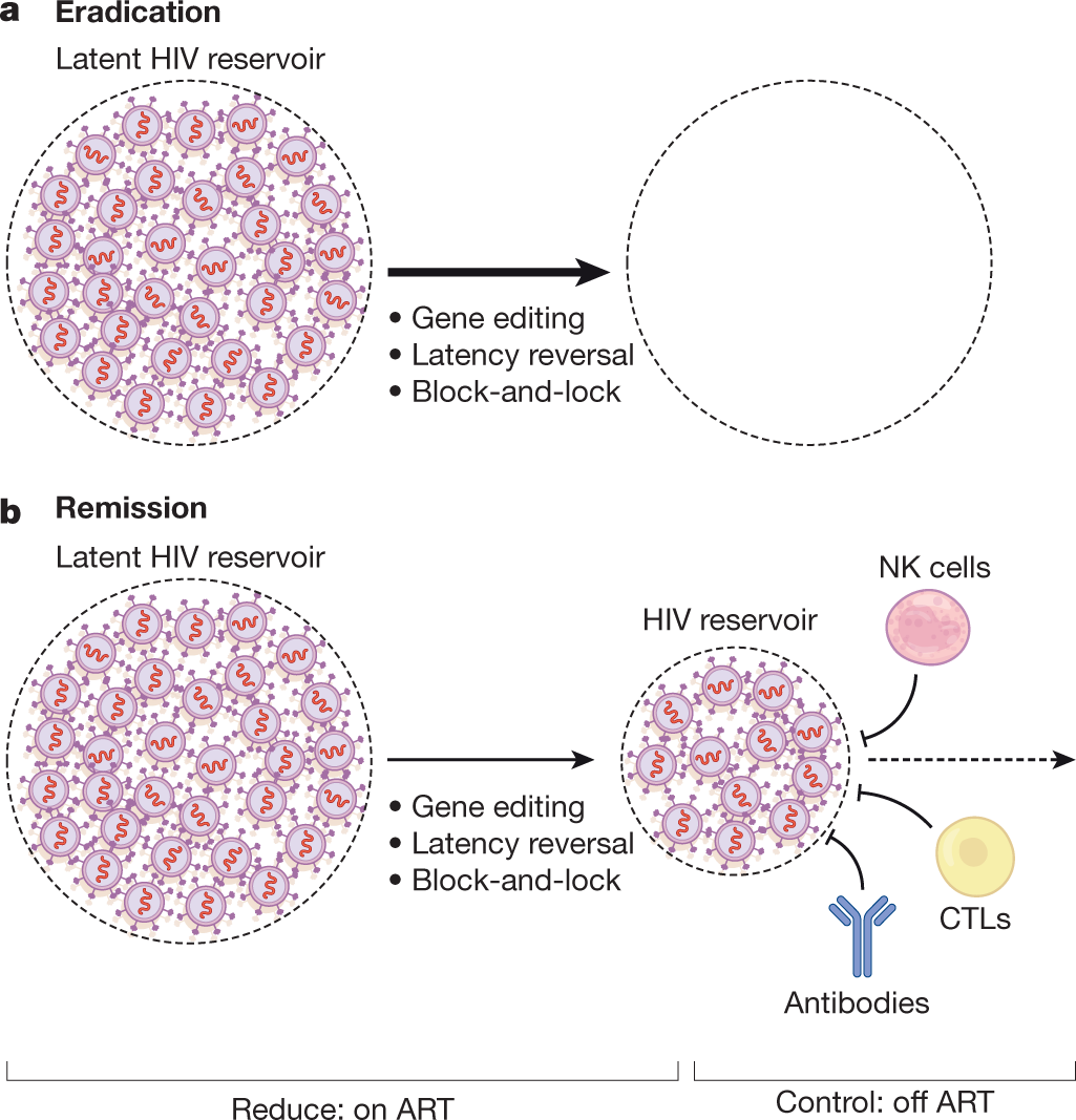 Why and where an HIV cure is needed and how it might be achieved