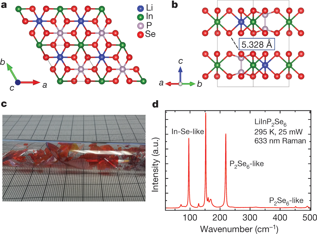 Direct thermal neutron detection by the 2D semiconductor 6 LiInP 2 Se