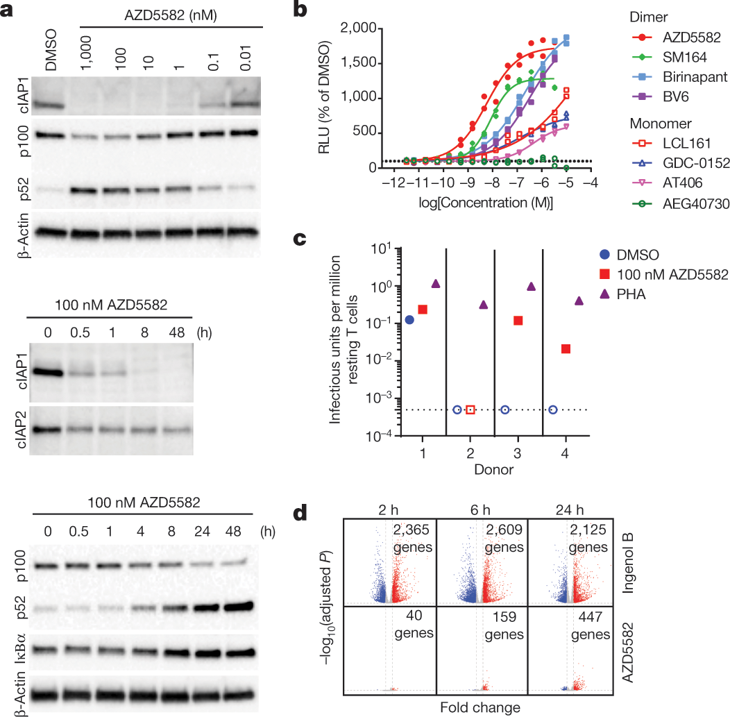 Systemic HIV and SIV latency reversal via non-canonical NF-κB sig