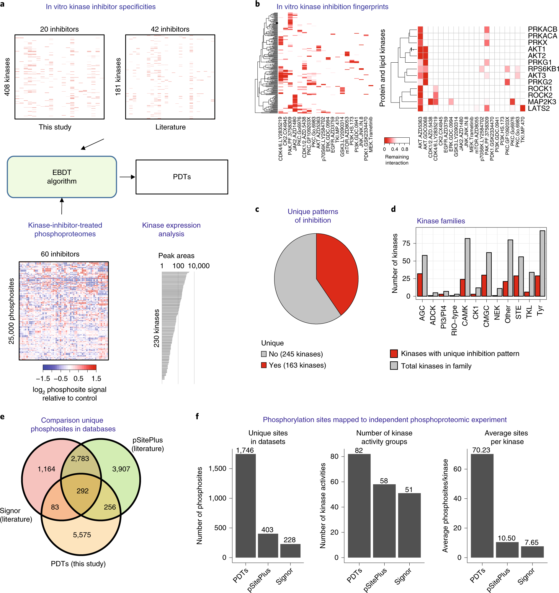 Reconstructing kinase network topologies from phosphoproteomics data r