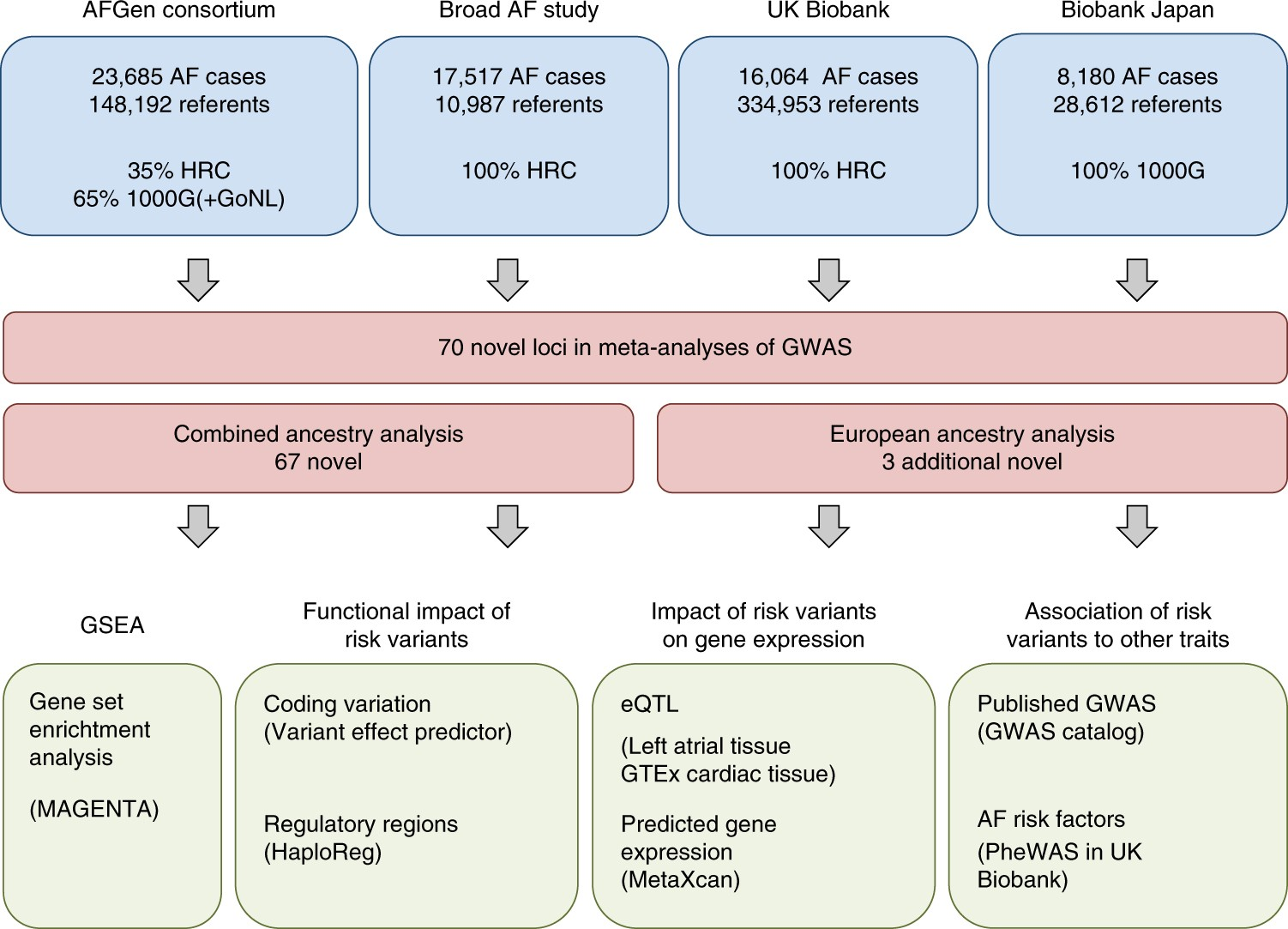 cae6e955c80942 Multi-ethnic genome-wide association study for atrial fibrillation ...
