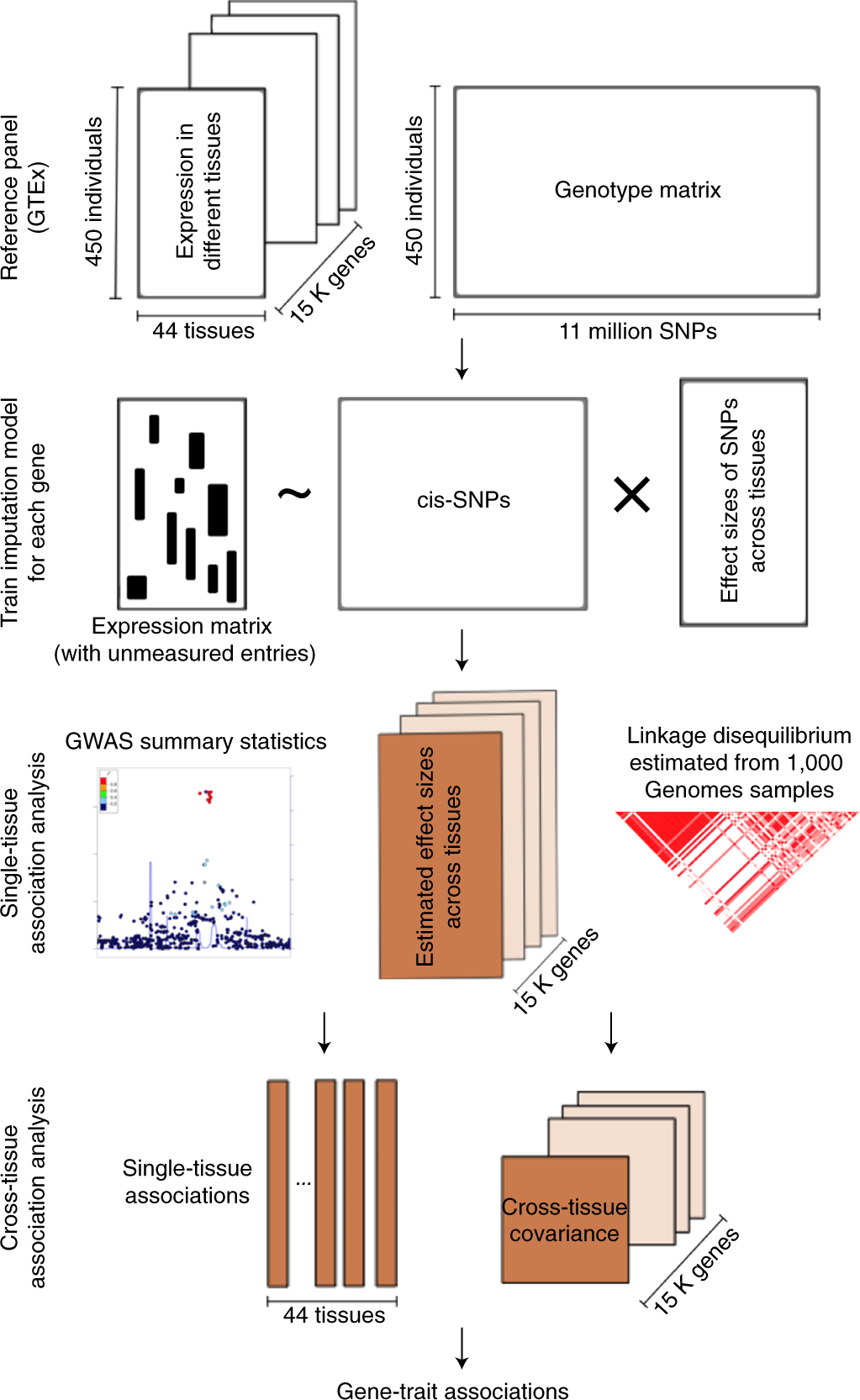 A statistical framework for cross-tissue transcriptome-wide