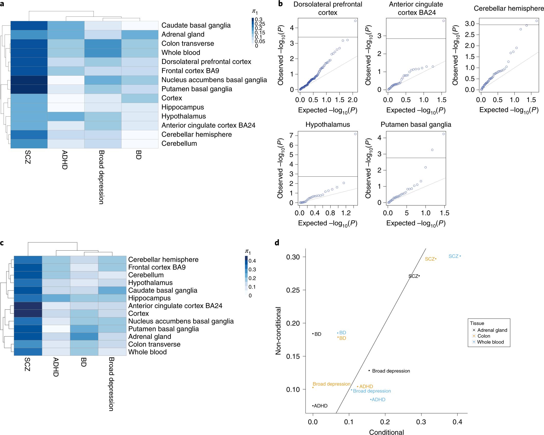 Multi-tissue transcriptome analyses identify genetic
