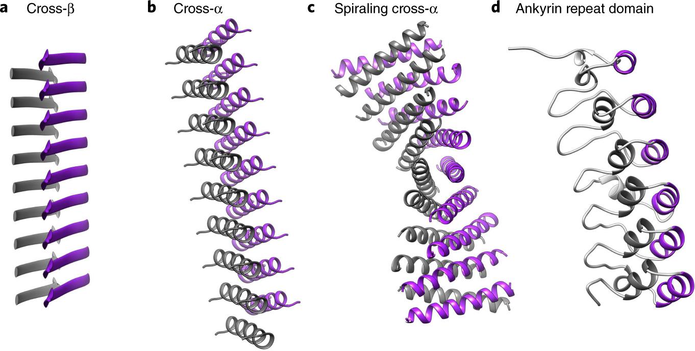 Mimicking cross-α amyloids   Nature Chemical Biology