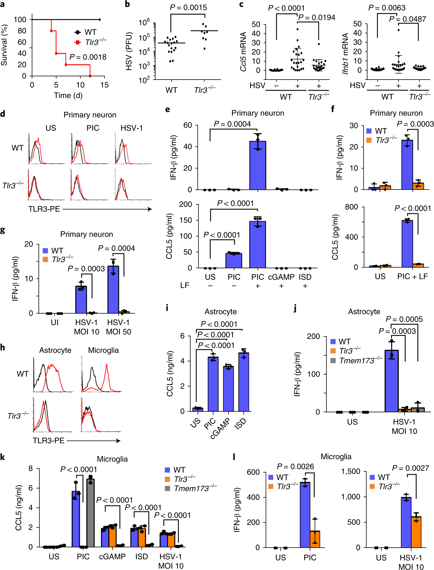 Combating herpesvirus encephalitis by potentiating a TLR3–mTORC2 ...