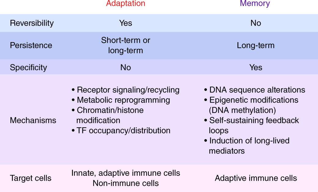 Adaptation and memory in immune responses