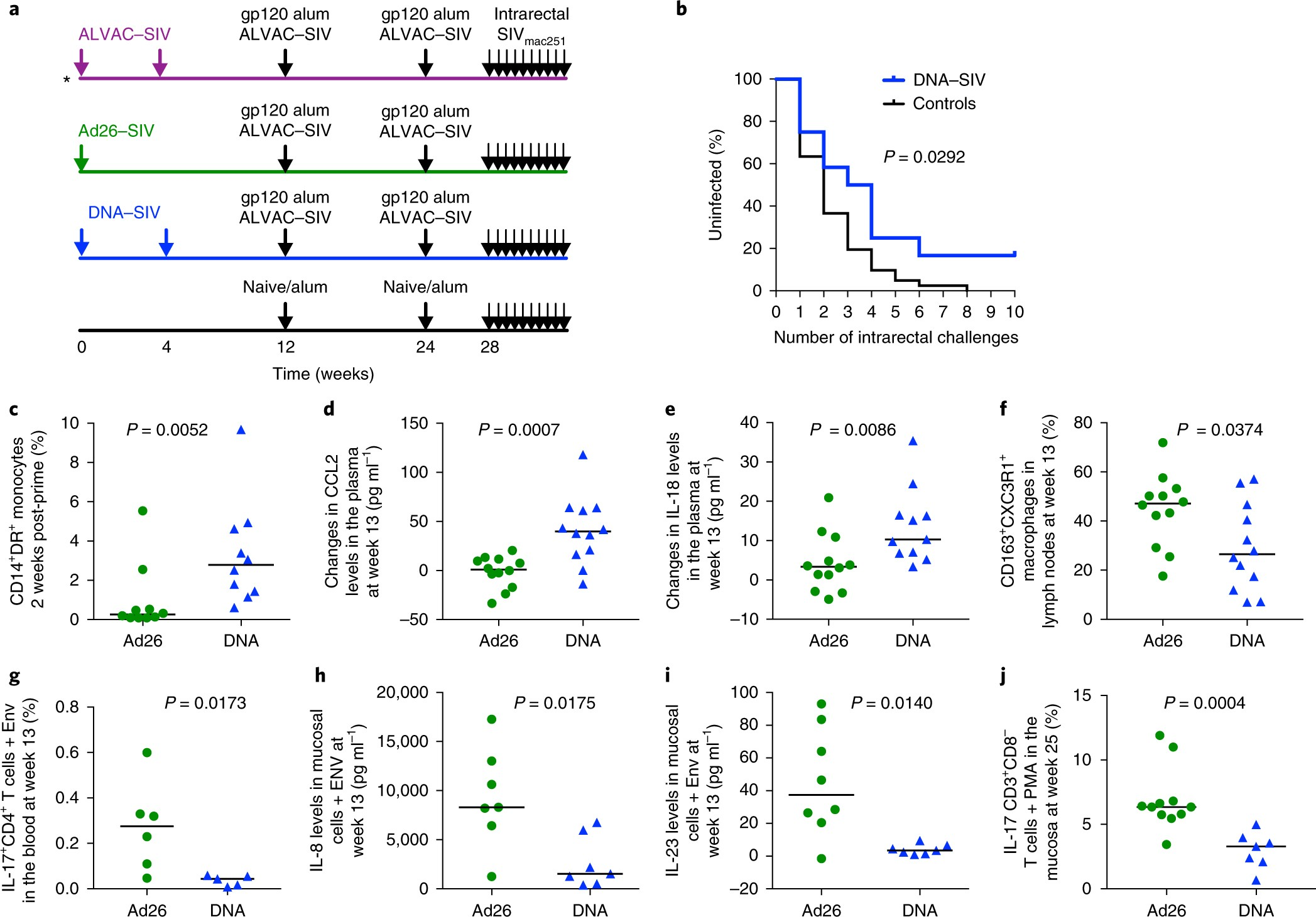 Hiv Vaccine Candidate Activation Of Hypoxia And The Inflammasome In Variable Voltage Regulator Circuit With L200 Cd14 Monocytes Is Associated A Decreased Risk Siv Mac251 Acquisition Nature