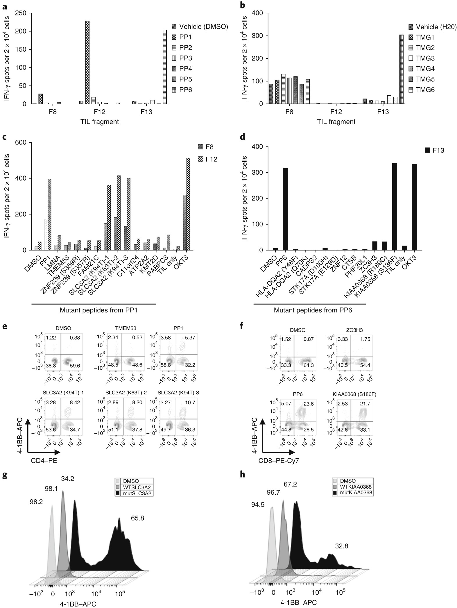 Immune Recognition Of Somatic Mutations Leading To Plete Durable