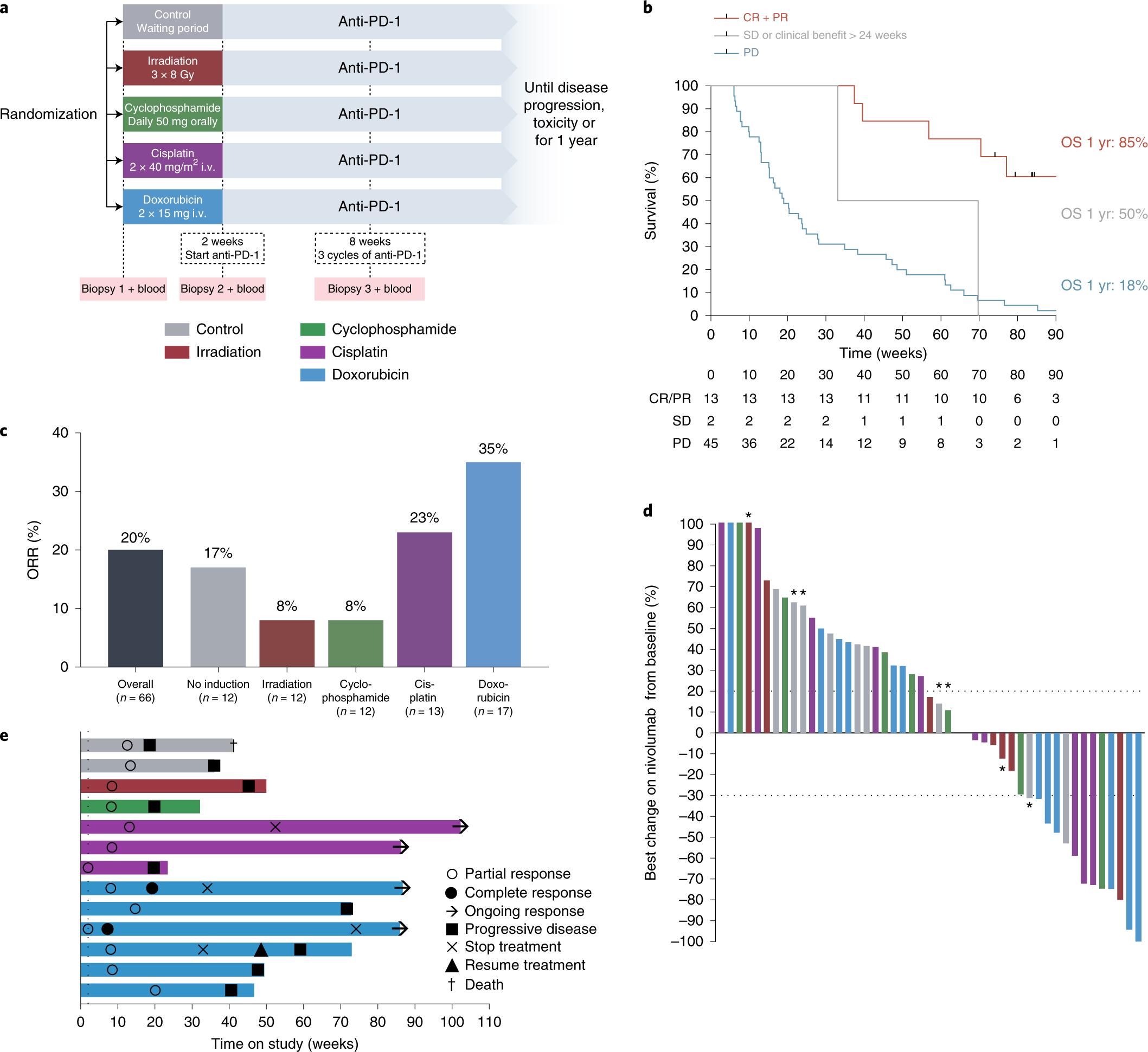 Immune induction strategies in metastatic triple-negative