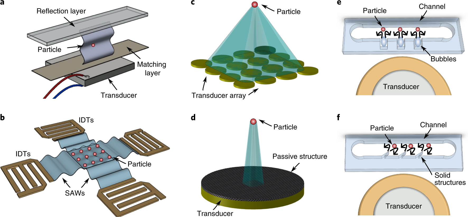 Acoustic tweezers for the life sciences | Nature Methods