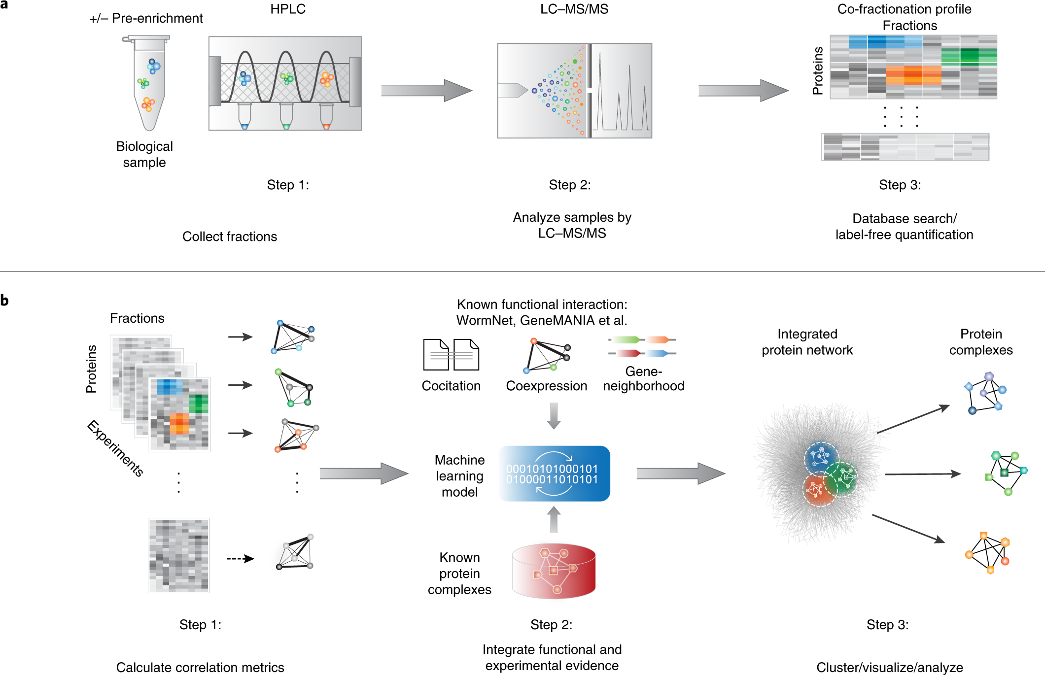 EPIC: software toolkit for elution profile-based inference of