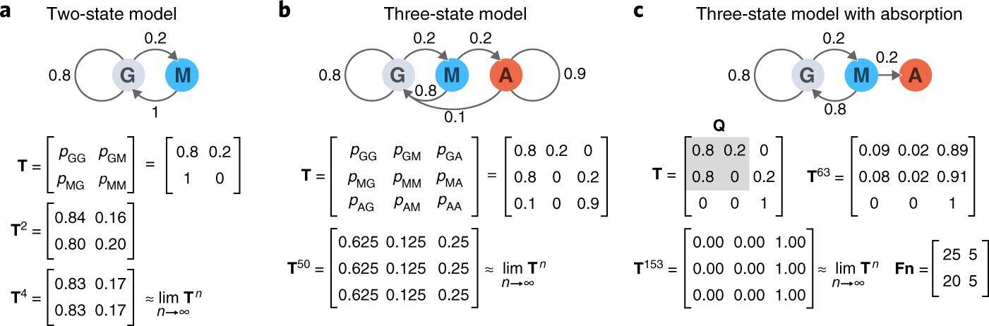 Markov models—Markov chains