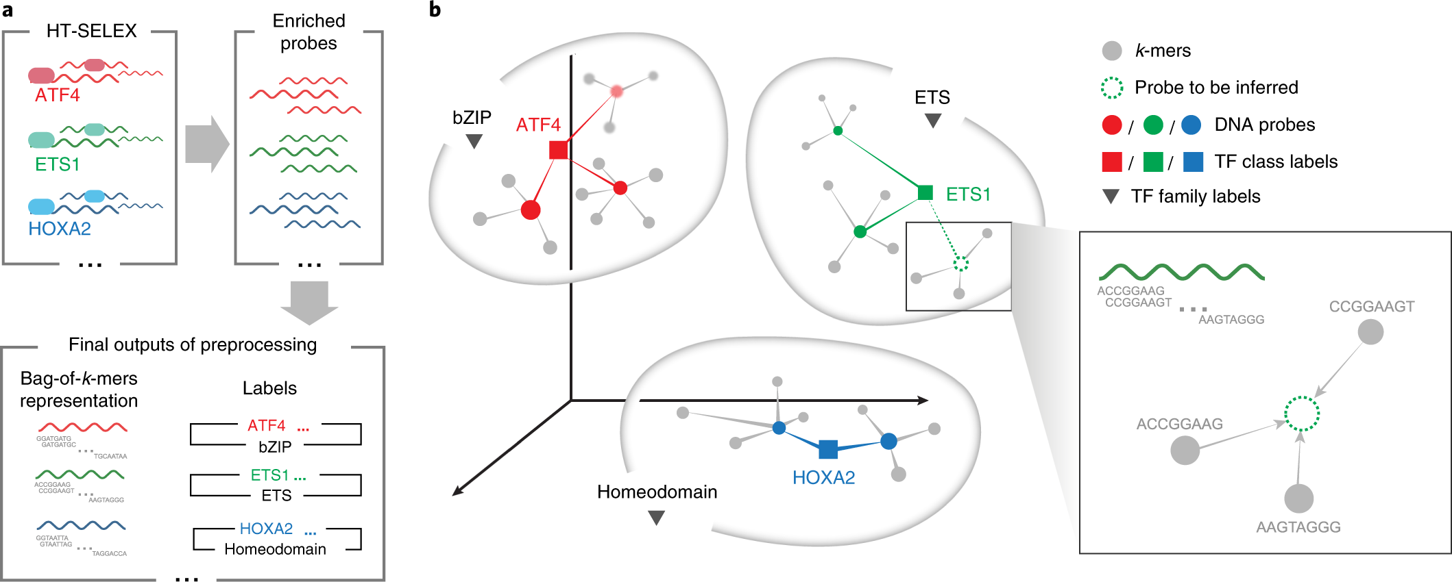 BindSpace decodes transcription factor binding signals by large