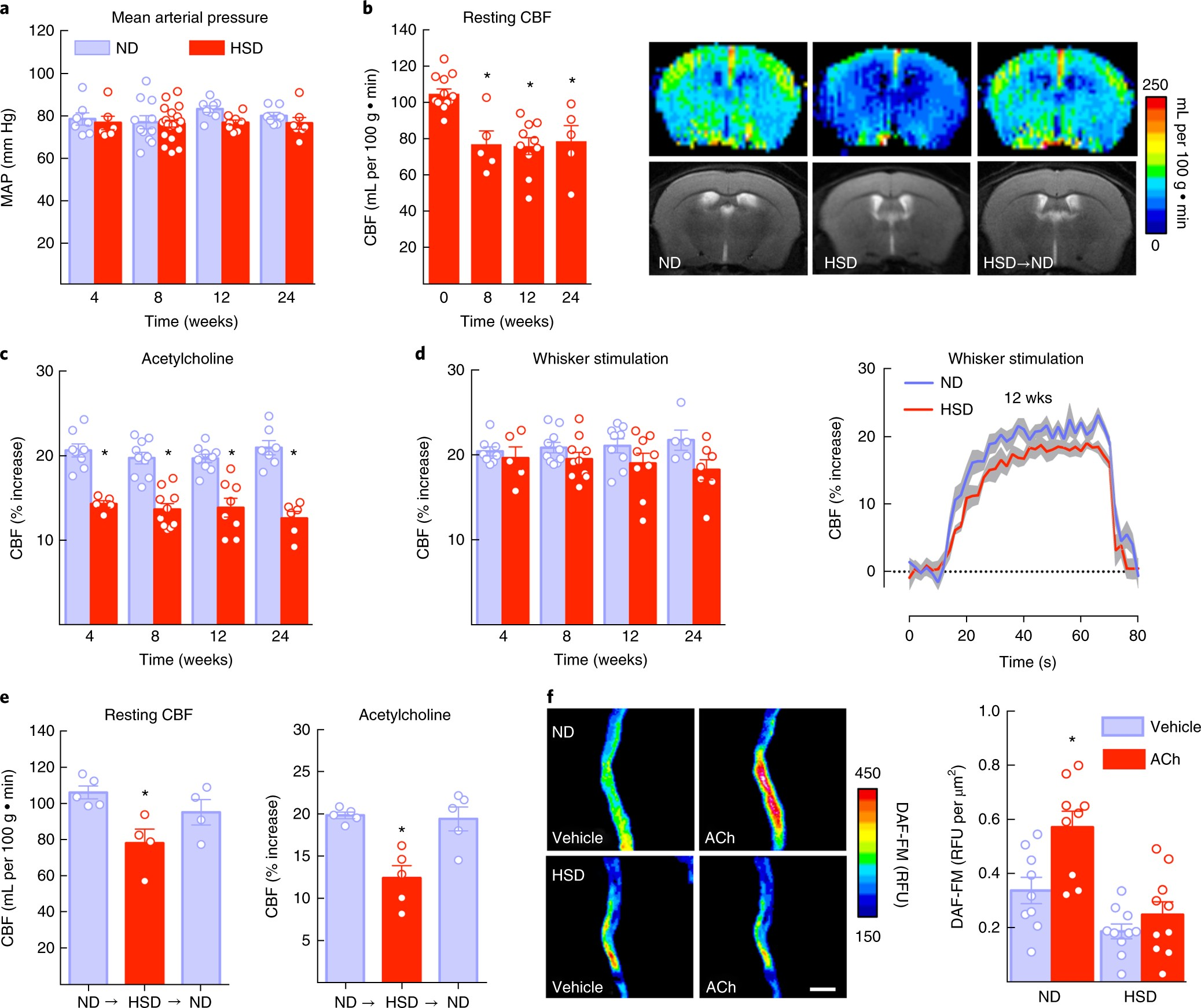 Dietary salt promotes neurovascular and cognitive