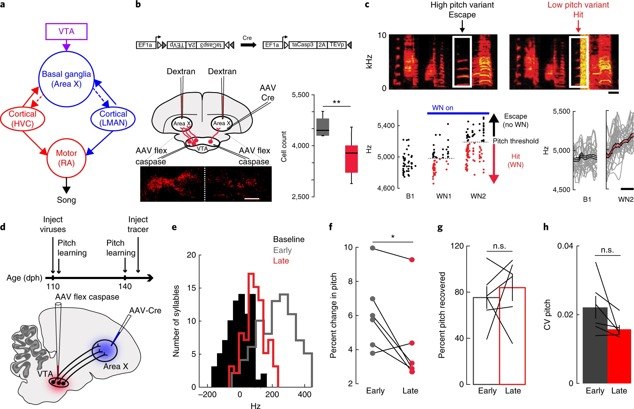 A Common Neural Circuit Mechanism For Internally Guided And Electromagnetic Field Detector Ua741 Externally Reinforced Forms Of Motor Learning Nature Neuroscience