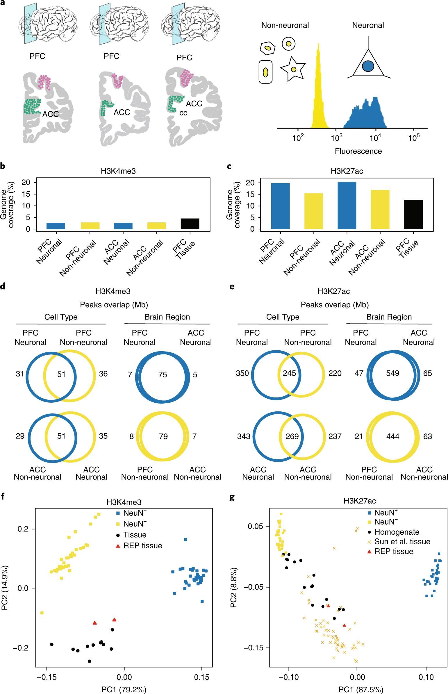 Cell Specific Histone Modification Maps In The Human Frontal Lobe Likewise Nimh Battery Charger Circuit Diagram On Link Schizophrenia Risk To Neuronal Epigenome Nature Neuroscience