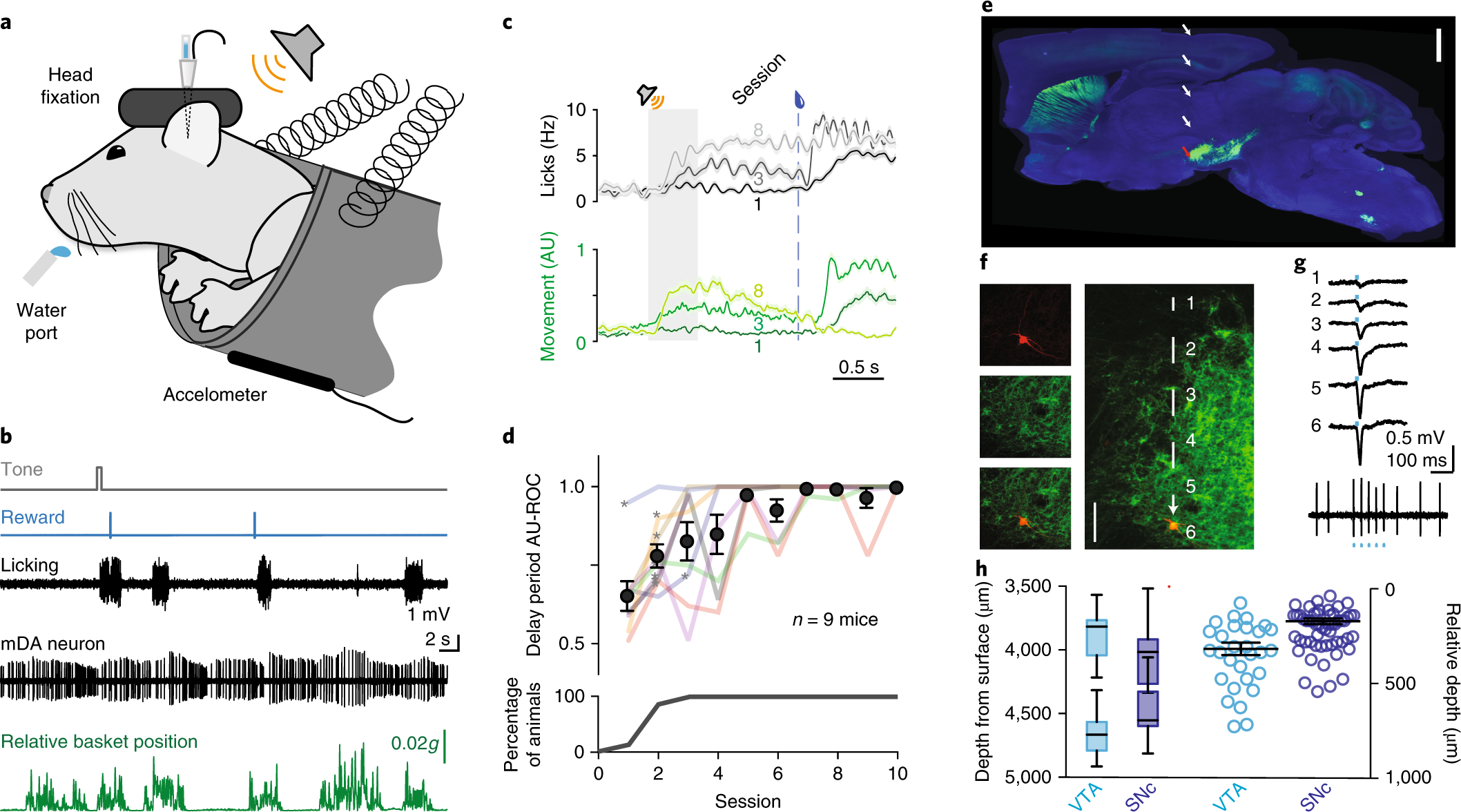 The Timing Of Action Determines Reward Prediction Signals In 555 Timer Circuit Electronic Key Code Lock Identified Midbrain Dopamine Neurons Nature Neuroscience