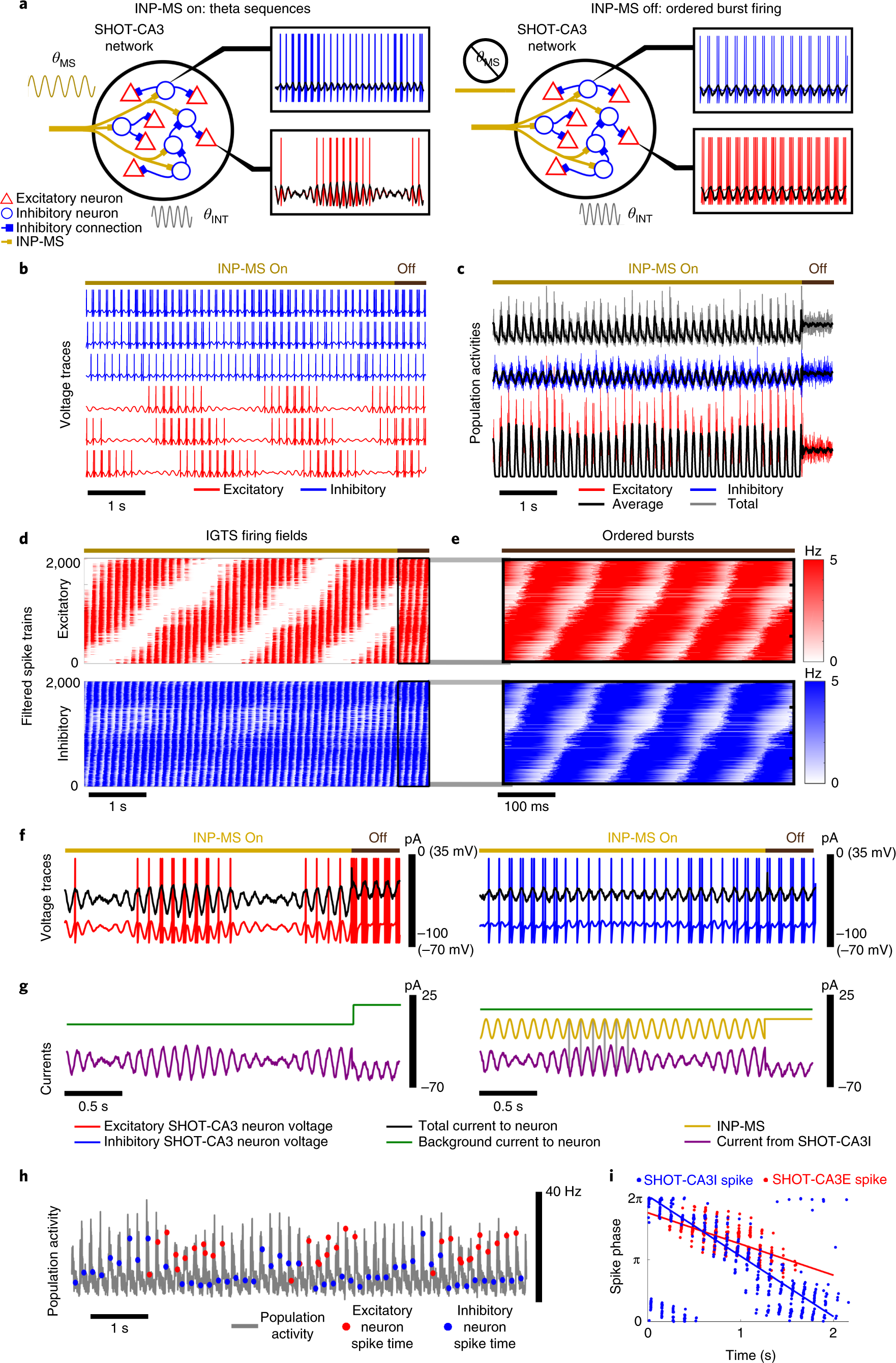 A diversity of interneurons and Hebbian plasticity