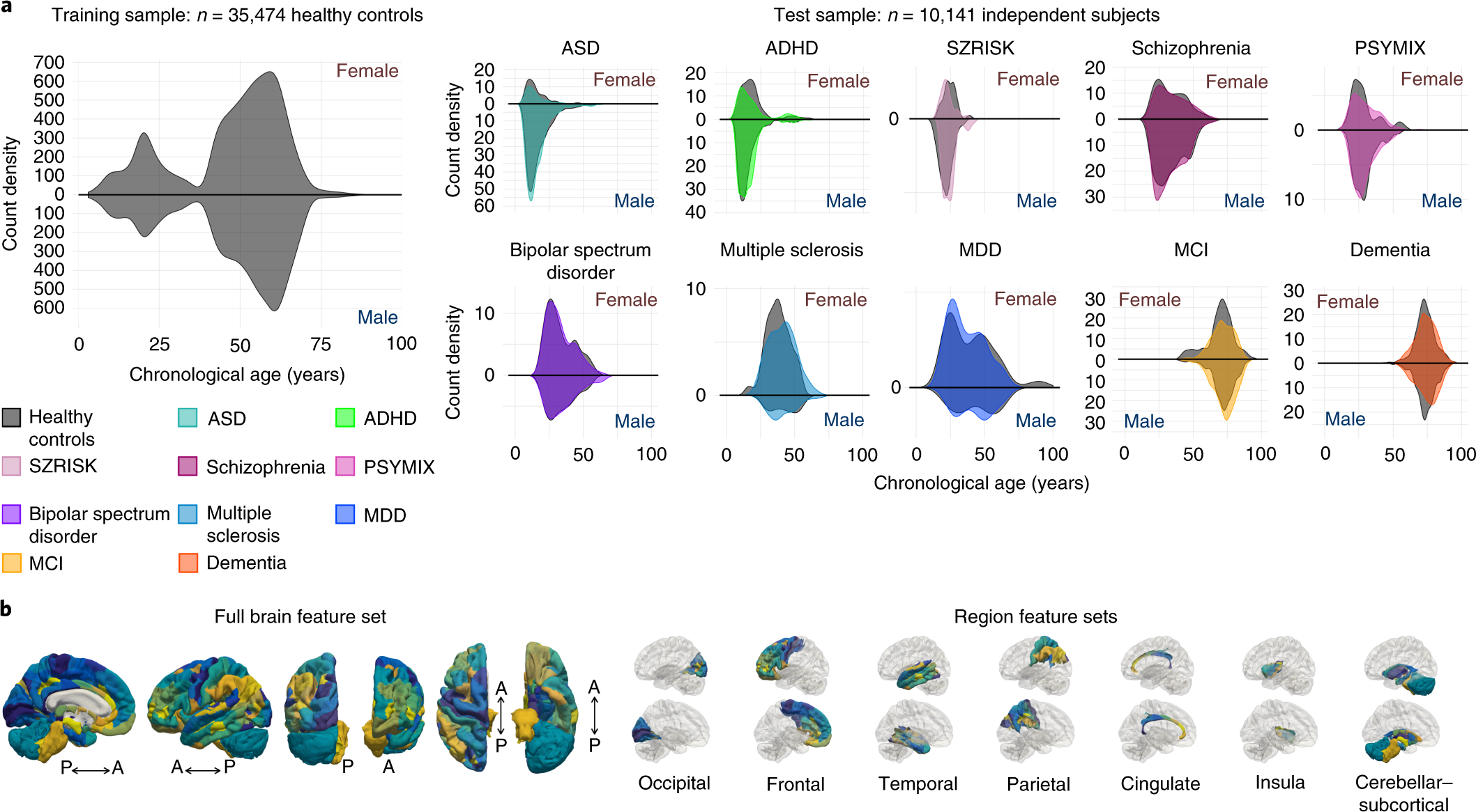 Common brain disorders are associated with heritable patterns of appar