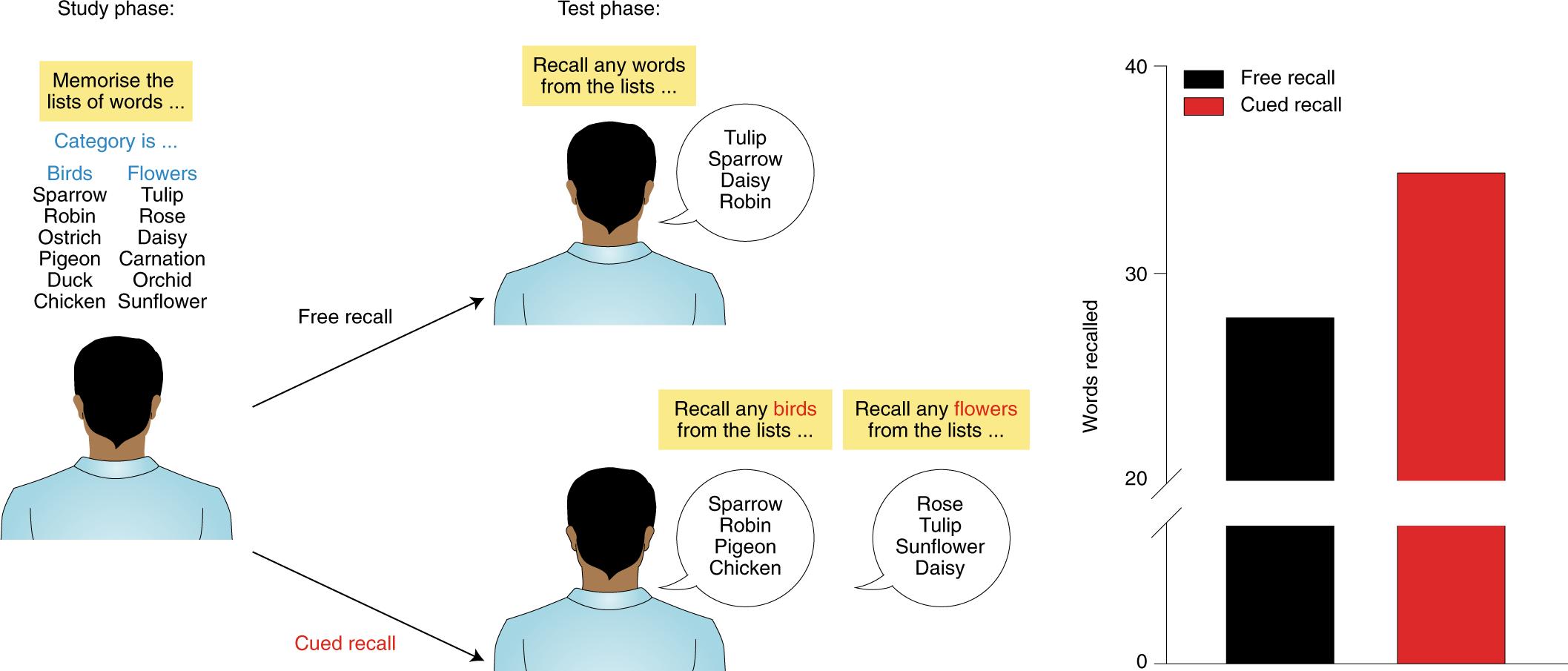 The neurobiological foundation of memory retrieval