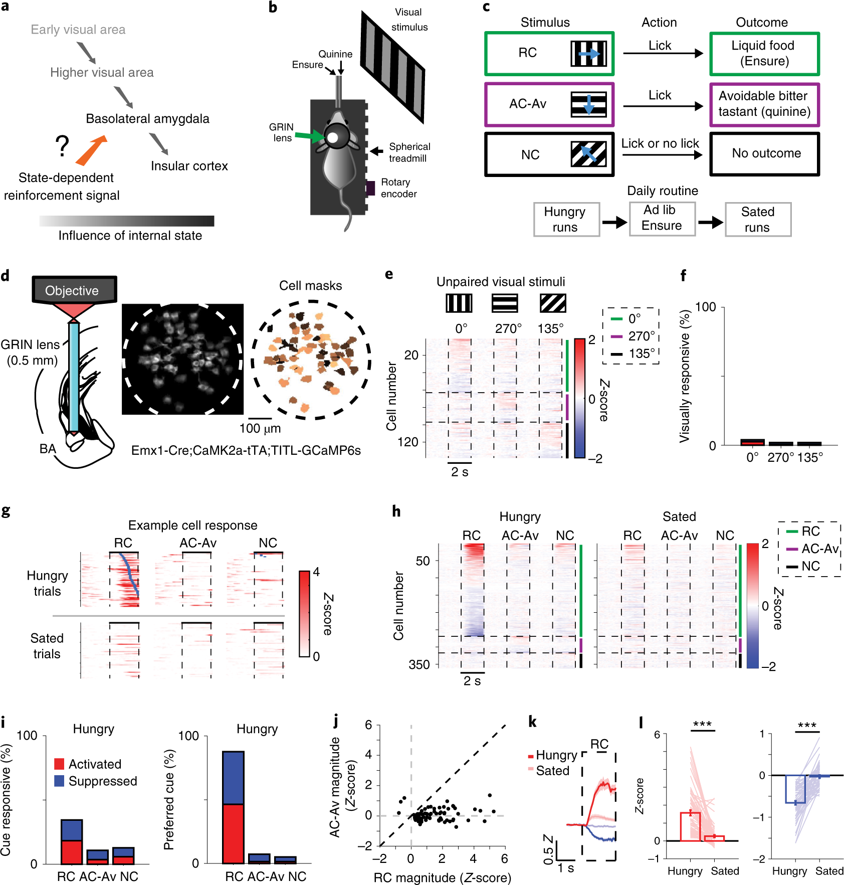 State-specific gating of salient cues by midbrain dopaminergic input t