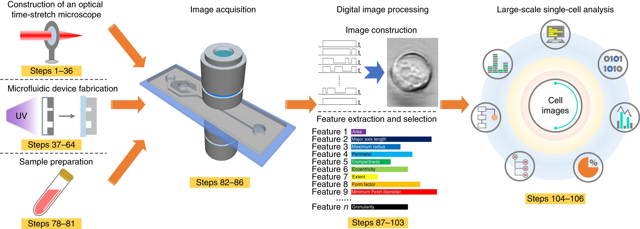 High Throughput Imaging Flow Cytometry By Optofluidic Time Stretch Bms Ddc Wiring Diagram Microscopy Nature Protocols