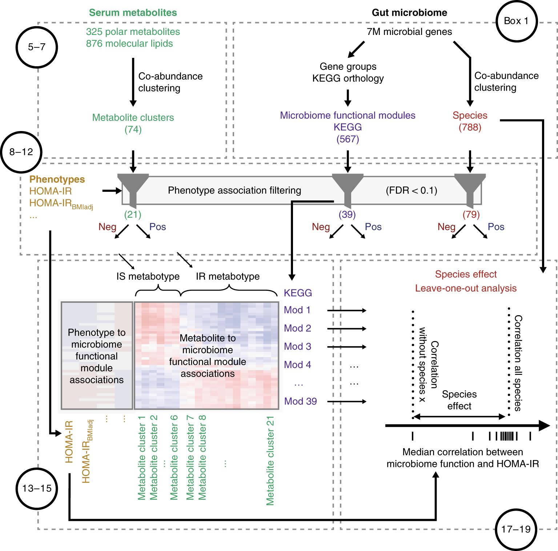 A computational framework to integrate high-throughput