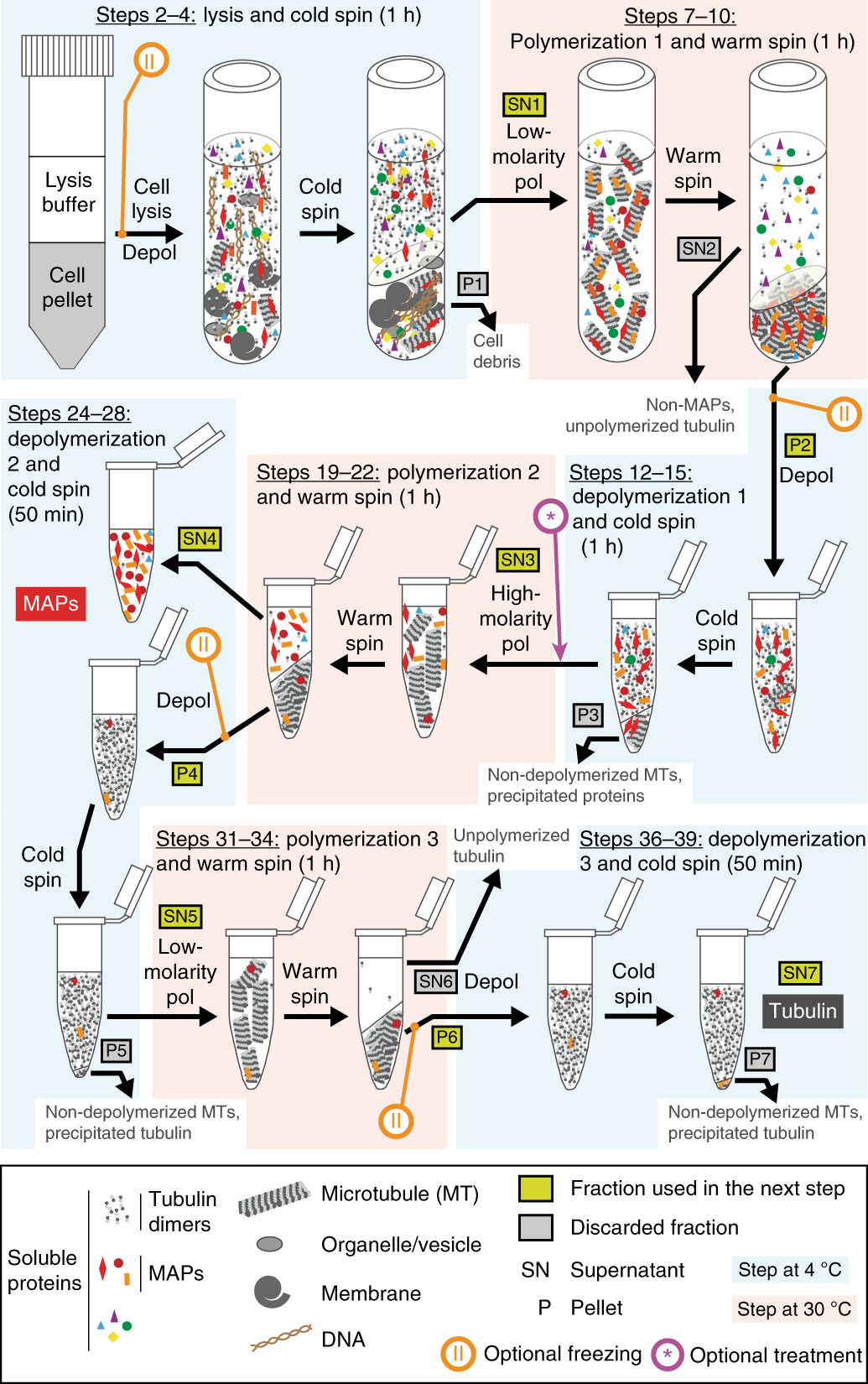 Purification of tubulin with controlled post-translational