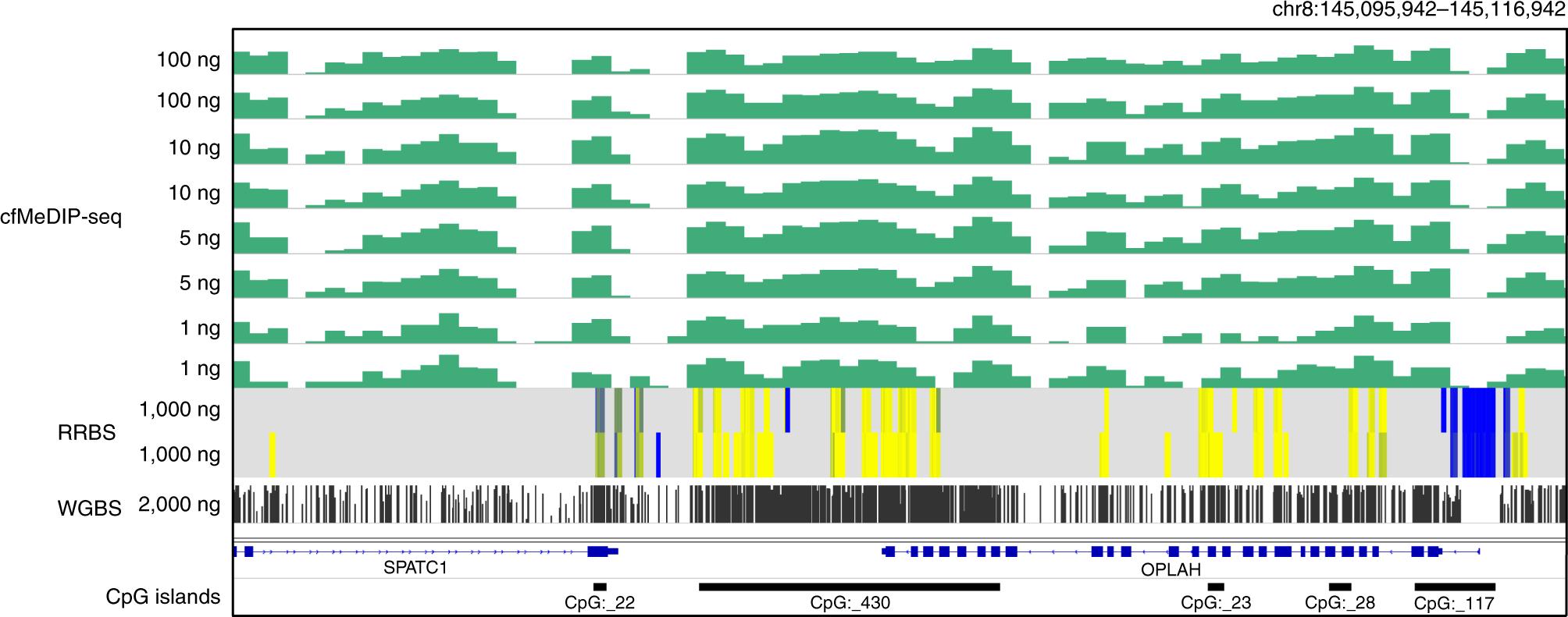 Preparation of cfMeDIP-seq libraries for methylome profiling of plasma