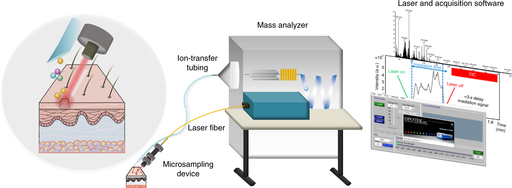 Water-assisted laser desorption/ionization mass spectrometry for minim