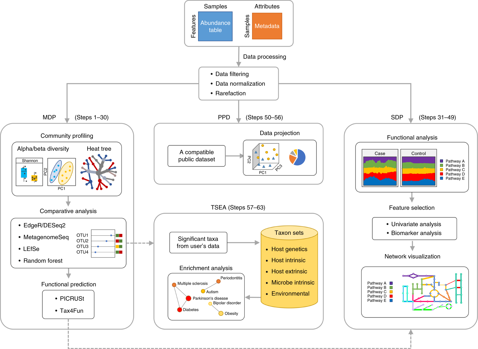 Using MicrobiomeAnalyst for comprehensive statistical, functional, and