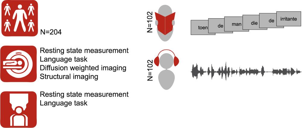 A 204-subject multimodal neuroimaging dataset to study language