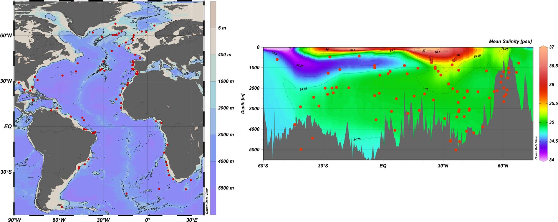 Radiocarbon dating Marina sediment