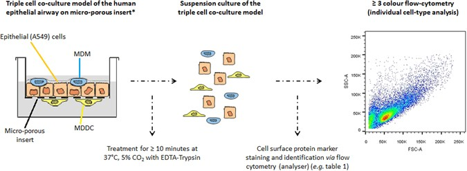 A novel technique to determine the cell type specific