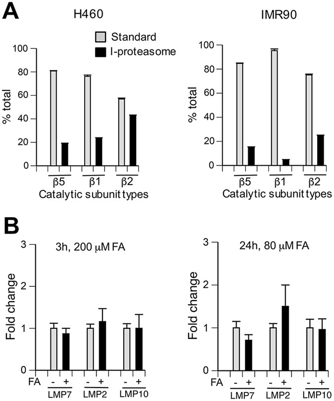 20s Immunoproteasomes Remove Formaldehyde Damaged Cytoplasmic