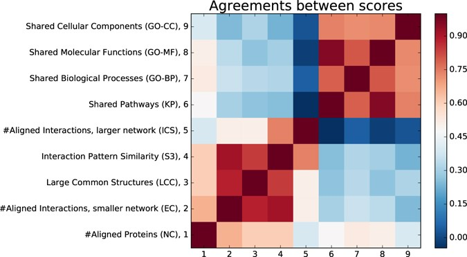 unified alignment of protein protein interaction networks