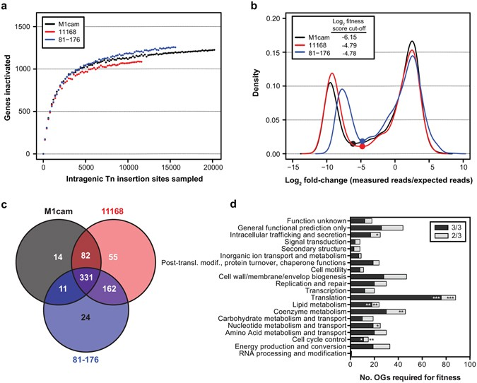 Genome-wide fitness analyses of the foodborne pathogen Campylobacter