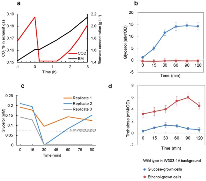 The yeast osmostress response is carbon source dependent