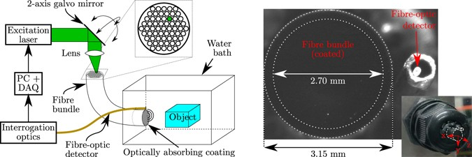 A reconfigurable all-optical ultrasound transducer array for