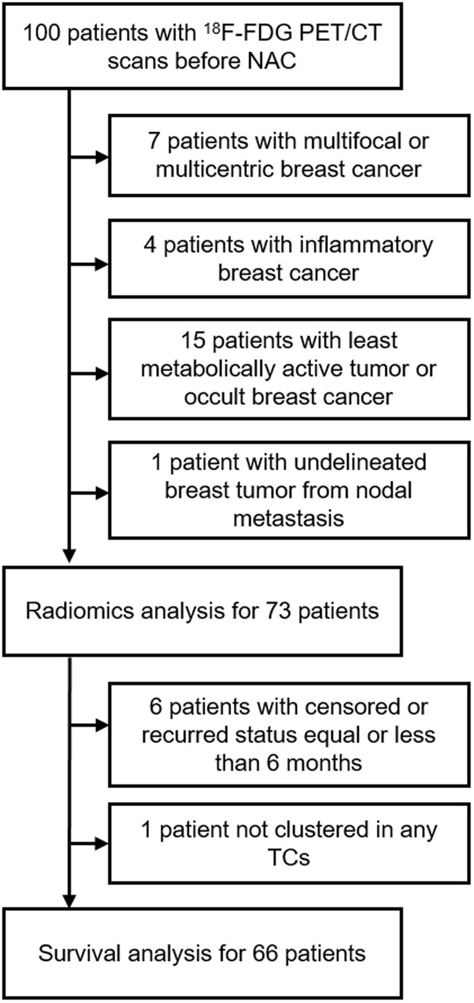 Metabolic Radiomics for Pretreatment 18 F-FDG PET/CT to Characterize