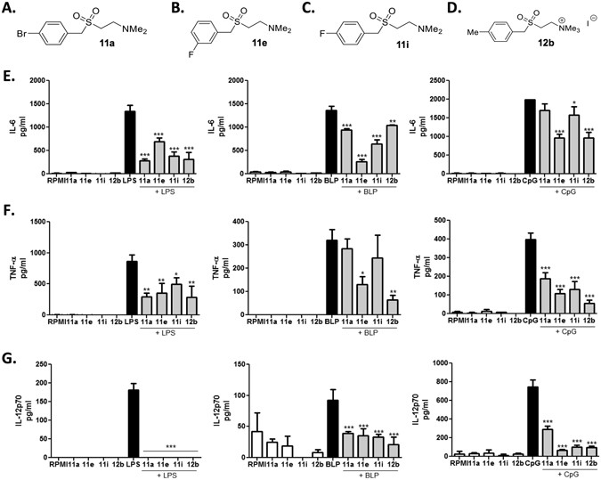 Small Molecule Ogues Smas Of The Parasitic Worm Product Es 62 Inhibit Pamp Induced Cytokine Production Structures 11a A 11e B