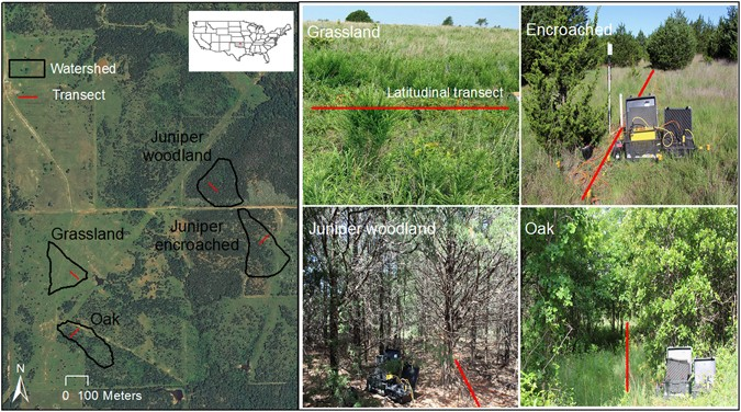 Vegetation controls on the spatio temporal heterogeneity of deep experiment site located in the south central great plains at the oklahoma state university cross timber range research station showing the grassland publicscrutiny Image collections