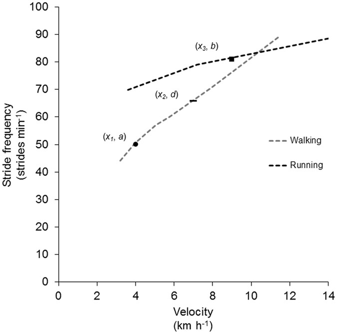 The Role Of Stride Frequency For Walk To Run Transition In Humans