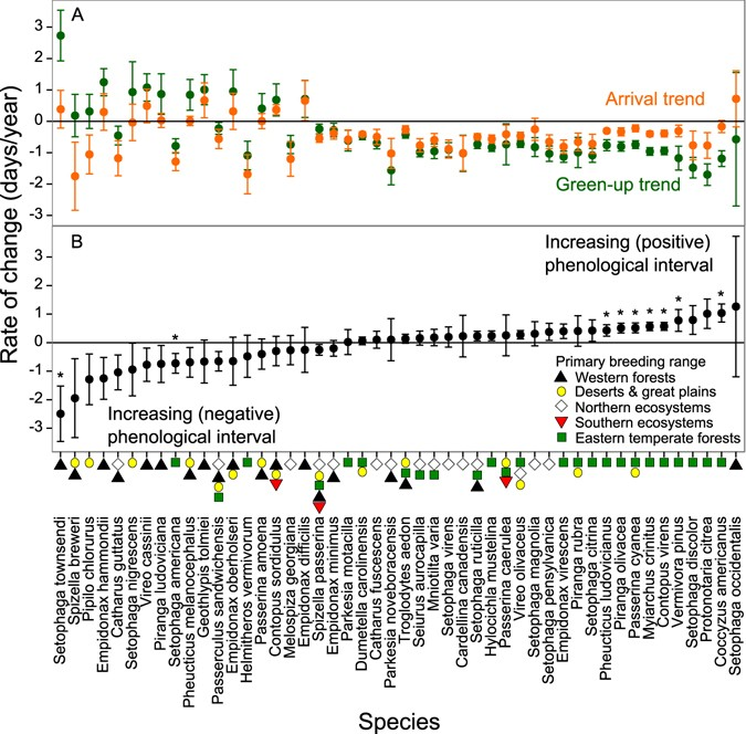 Increasing Phenological Asynchrony Between Spring Green Up And