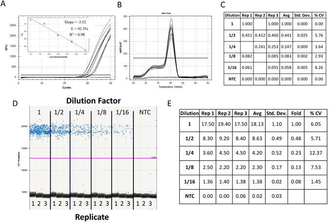 Droplet Digital PCR versus qPCR for gene expression analysis with